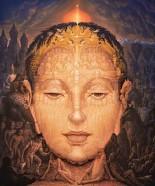 The Authentic Illusion